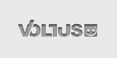 Voltus Logo grau