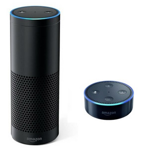 NEO Plugin amazon echo